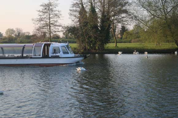 Windsor Bateaux Sunday Lunch Cruise