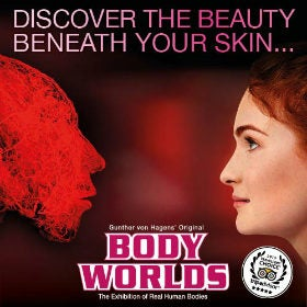 Body Worlds - London London Breaks