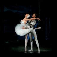 Irina Kolesnikova London Season: Swan Lake