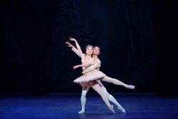 Nutcracker - English National Ballet