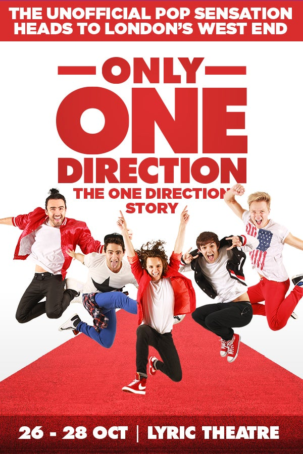 Only One Direction - The One Direction Story