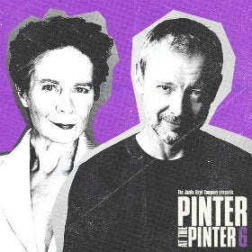 Pinter 6: Party Time / Celebration