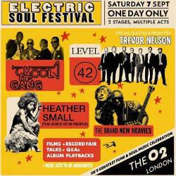 Electric Soul Festival